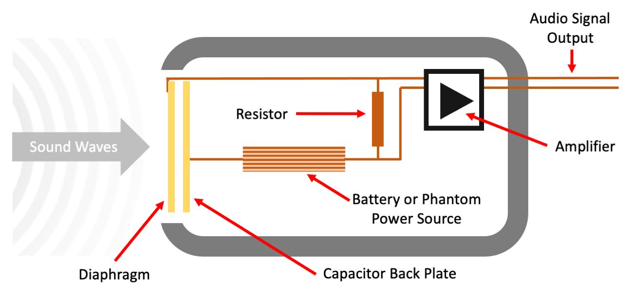 Figure 13.2. Simplified condenser microphone schematic